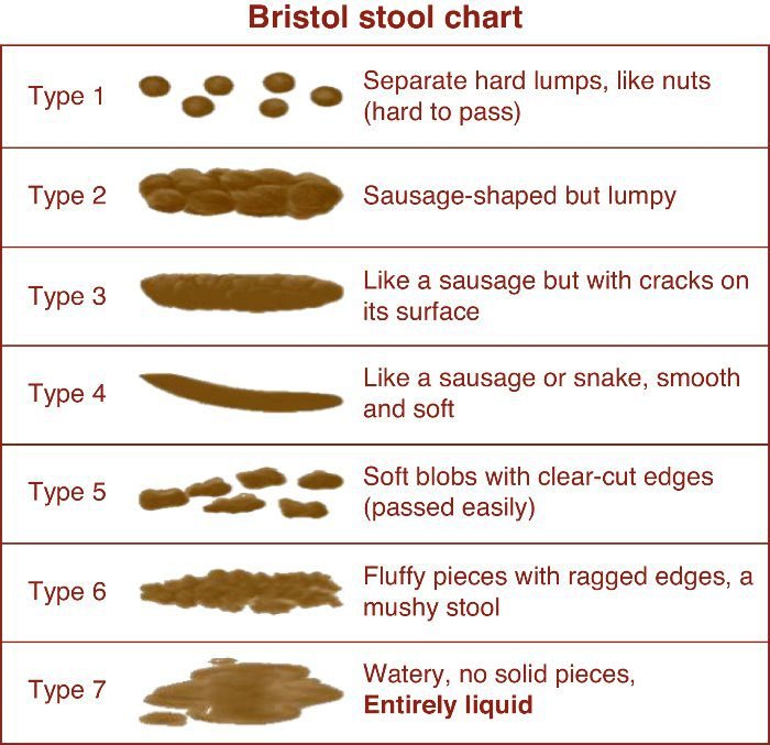 Bristol Stool Chart Miracles Of Healthmiracles Of Health